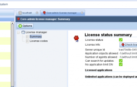 License manager showing current status